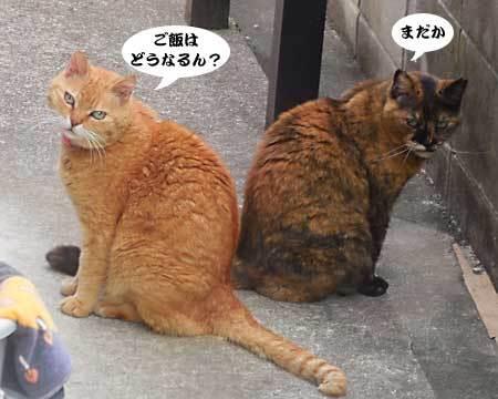 2017_05_03_3.jpg
