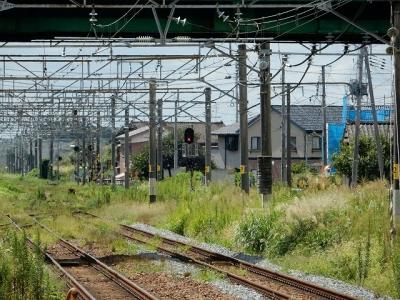 DSCN6070.jpg