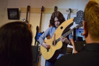 ハープギター