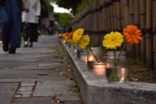 お花と灯り