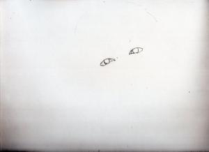 img893.jpg