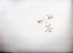 img894.jpg