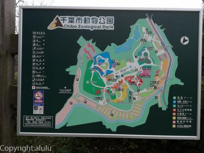 千葉市動物公園 園内マップ