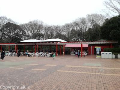 千葉市動物公園 売店