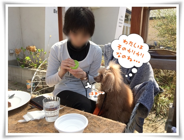 IMG_2497_1.jpg