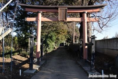 久伊豆神社(蓮田市駒崎)3