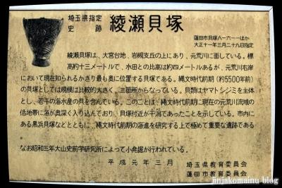 貝塚神社(蓮田市貝塚)11
