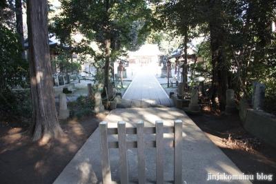 氷川神社(北足立郡伊奈町本町)5
