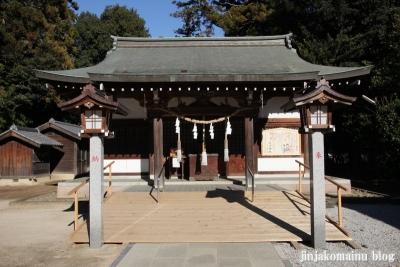 氷川神社(北足立郡伊奈町本町)8