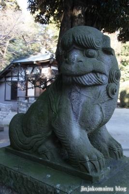 氷川神社(北足立郡伊奈町本町)25