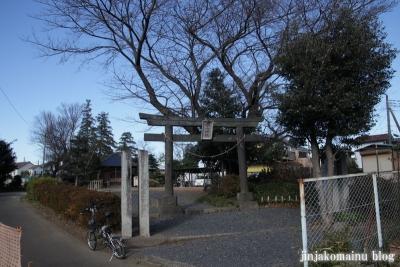 白山神社(上尾市原市)1