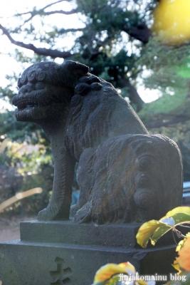 氷川神社(さいたま市見沼区丸ケ崎町)20