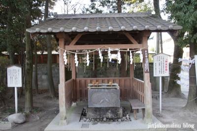 春日部八幡神社(春日部市粕壁)14