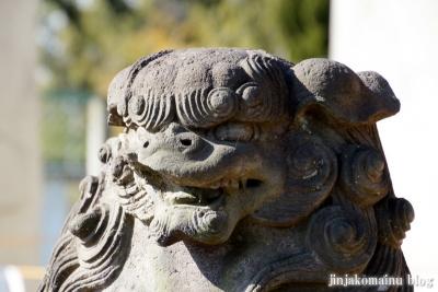 鷲神社(春日部市小淵)29