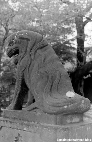 二ツ宮氷川神社(さいたま市西区二ツ宮)1