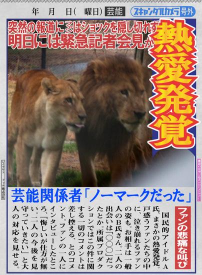 ライオン_1577