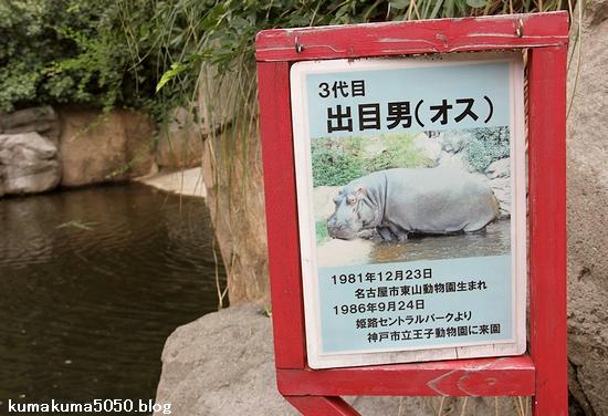 王子動物園_20
