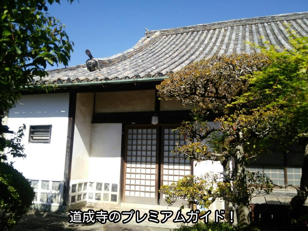 道成寺さんのプレミアムガイド!
