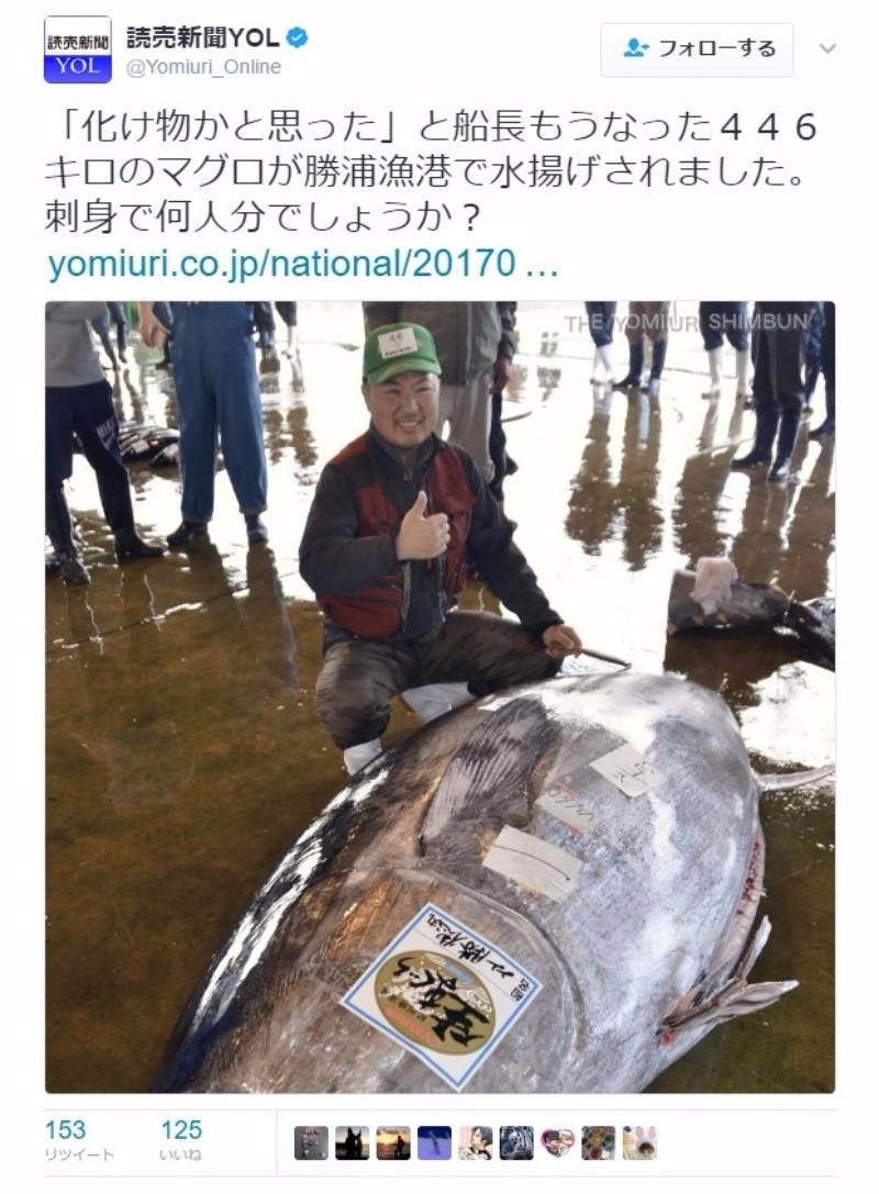 【大きい】和歌山・那智勝浦で68年間で最大の「巨大マグロ」を捕獲!