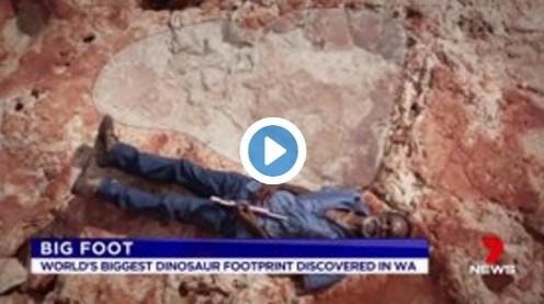 【巨大生物】オーストラリアで世界最大「1.75メートル」もある恐竜の足跡を発見