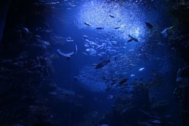 「月面と深海」なら、どちらの探査が困難か?