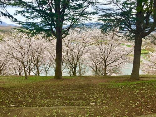 矢木羽湖7