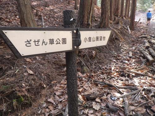 小倉山12
