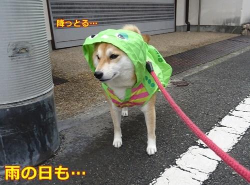 3雨の日も