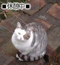渡瀬草一郎