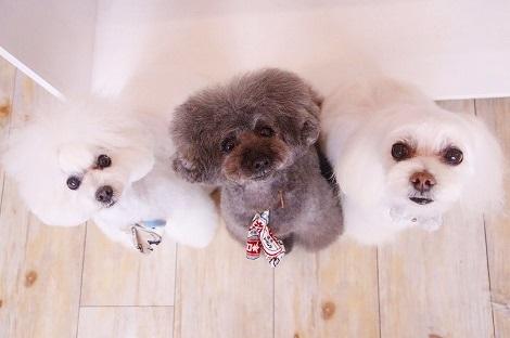 3姉妹で@ピスタチオ